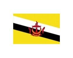 vlaječka BRUNEJ