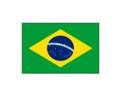 vlaječka BRAZÍLIE