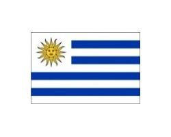 vlaječka URUGUAY