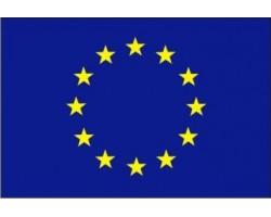 vlajka EU tištěná